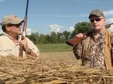 Jubilee | Dove Hunting in Clinton County