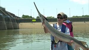 Taking Aim: Bow Fishing