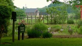 Grasshoppers, Nature Center, GE Foundation, Farnsley-Moremen