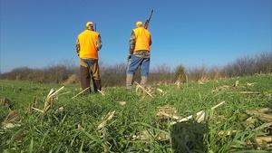 Rabbit Hunting with Denny Crum