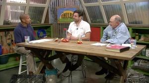 Hummingbirds and Fruit Pest Control
