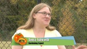 How to Build a Compost Pile & Liming Your Lawn