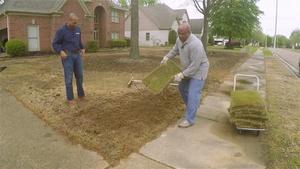 Fertilizer Basics and Laying Sod