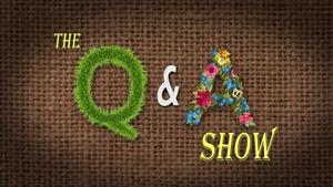Q and A Show