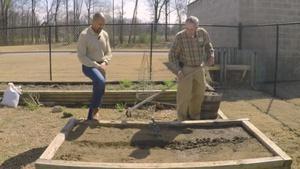 Planting Cool Season Vegetables & Pruning Crape Myrtles