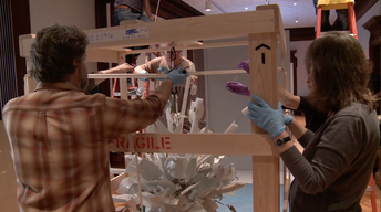 Installing Cooper Hewitt's One-of-a-Kind Light Fixture