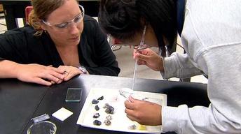 STEM Status: Science, Technology, Engineering & Math in La.