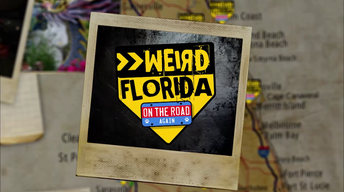Weird Florida: On the Road Again