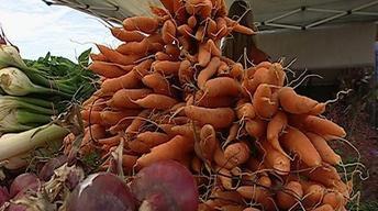 Home Garden Produce