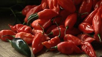 Peppers Pack a Punch