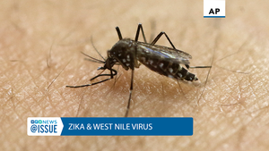@Issue: Zika and West Nile Virus