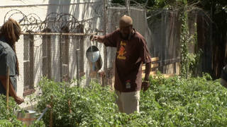 From Horticulture to Housing, Helping Struggling Veterans