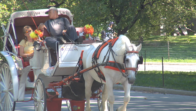 de Blasio's Horse Carriage Plan Falls Apart