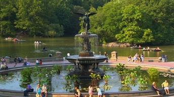 New York Senator Proposes Neighborhood Parks Alliance