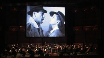 Audience Enjoys Live Orchestra Accompaniment to 'Casablanca'