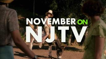 November Highlights 2016