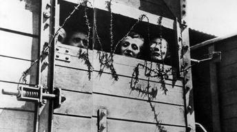 Treblinka's Last Witness