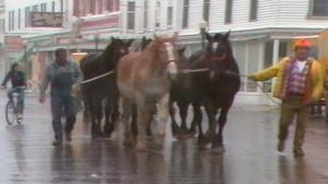When the Horses Leave: Metamorphosis at Mackinac