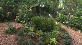 Volunteer Gardener 2512