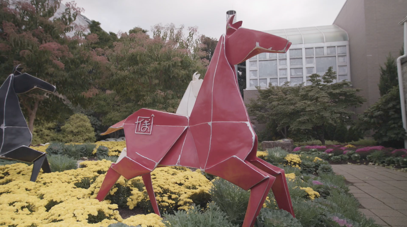 Video origami in the garden watch broad and high online wosu tv video Better homes and gardens episodes 2016