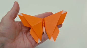 Web Exclusive: A Lesson in Origami