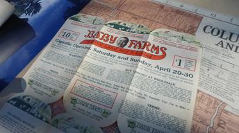 Baby Farms