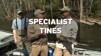Specialist Tines Ep 4