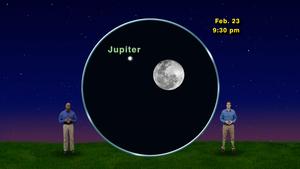 """""""The Jovi-Lunar Super Scootchie"""" February 15-21st 5 Min"""