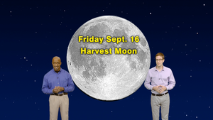 """""""Up All Night with the Harvest Moon"""" Sept 5-11th 5 Min"""