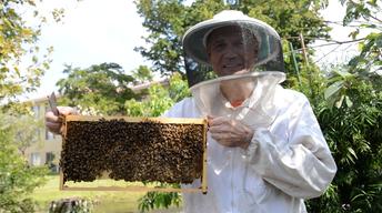 Your Story: Backyard Beekeeper