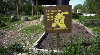 The Victory Garden Initiative