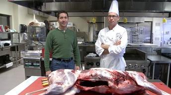 Deer Hunt   Butcher