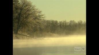 Wisconsin Stories: Native Journeys