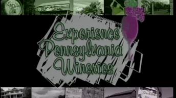 Experience Pennsylvania Wineries
