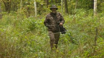 Native Americans Help Return Elk to the Wisconsin Territory