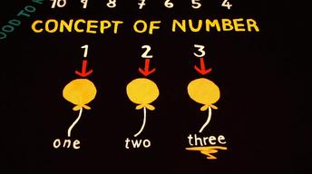 Concept of Number   Pre-K