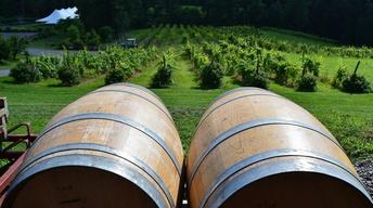 Six Mile Creek Vineyards
