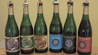 Bellwether Hard Cider