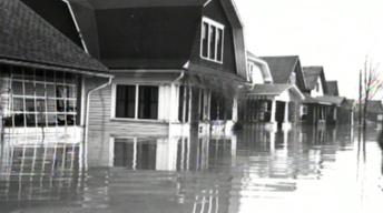 The Flood of '35