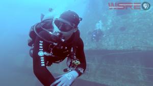Undersea Northwest Florida