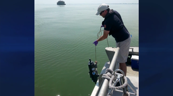 Cleaning the Great Lakes