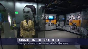 What's Ahead for Chicago's DuSable Museum