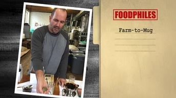 Farm-to-Mug