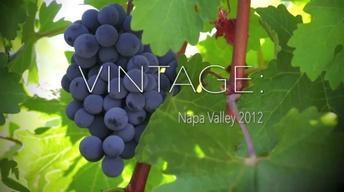 Vintage: Napa Valley 2012