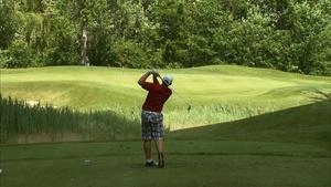 Fieldstone Golf Course / Great Lakes Art Fair