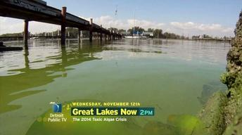2014 Toxic Algae Crisis Special preview - 11/12/14