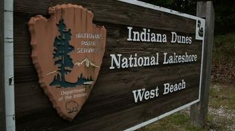 Indiana Sand Dunes | Great Lakes Week 2015