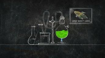 How Do You Make Ethanol?