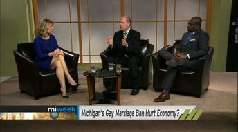 Could Michigan's Gay Marriage Ban Hurt Economy?