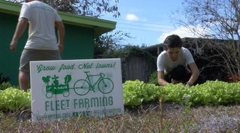 ONE Central Florida Short: Fleet Farming